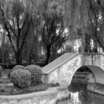 White Horse Temple Bridge - 10 x 12 - Photography
