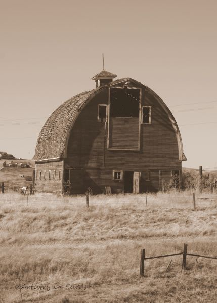 Weathered Barn - 13 x 11 - Photography