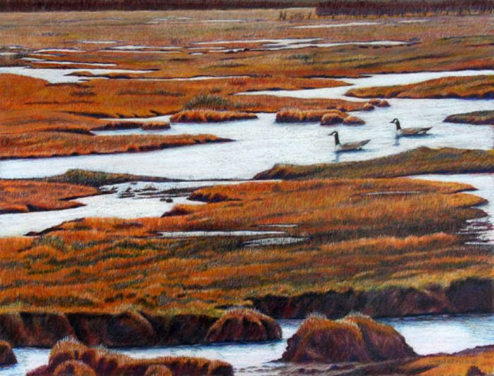 Big Meadow Marsh - 20 x 16 - Watercolor, Colored Pencil