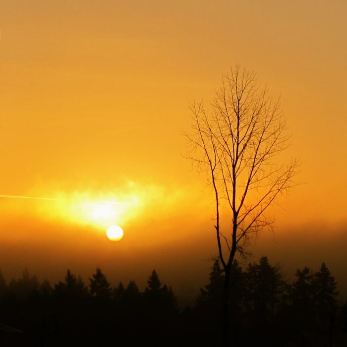 Yellow Sunrise - 20 x 20 - Photography