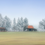 A Frost Morning in Wilsonville - 30 x 20 - Photography