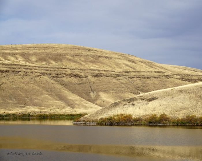 Dry Hills In The Palouse - 17 x 14 - Photography