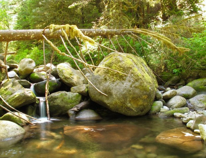 Sprightly Waterfall - 22 x 18 - Photography