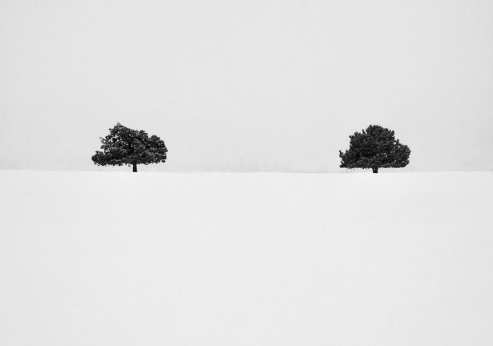 Sisters in the Snow - 19.25 x 15.25 - Photograph