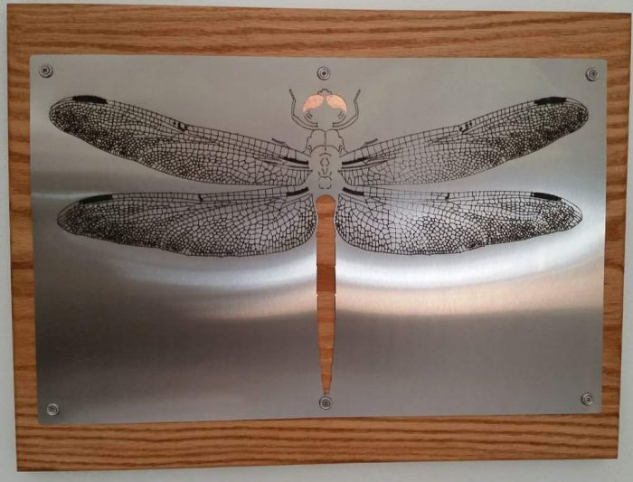 Dragonfly - 20 x 15.5 - Stainless Steel, Copper, Red Oak
