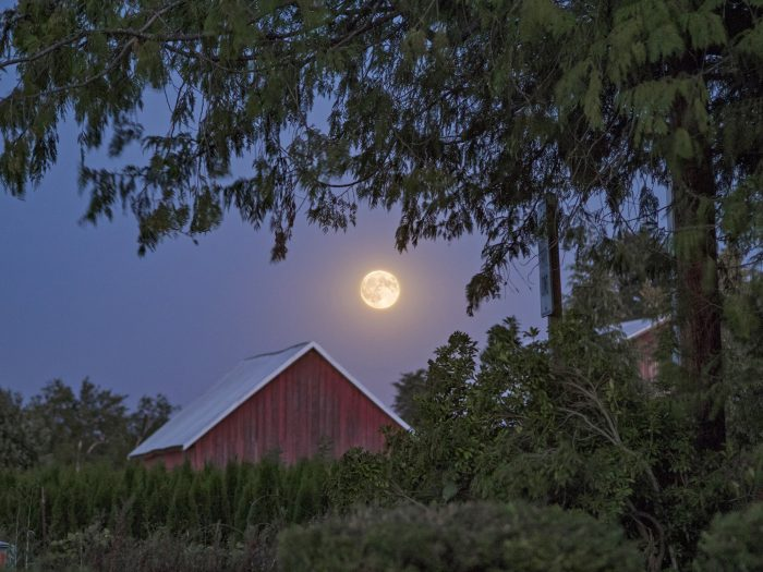 Blood Moon over Barn - 6.667x5 - Photography