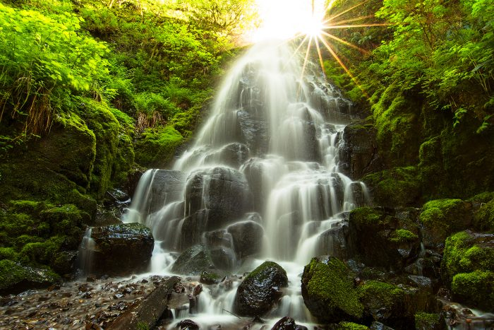Fairy Falls Sunburst, Columbia River Gorge 2016 - 30x20 - Photography