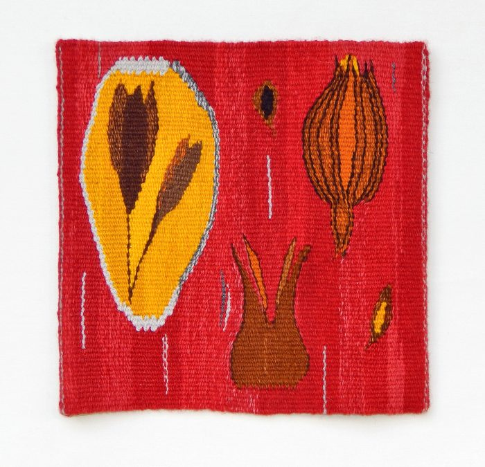 Janet Dorow - Seed Pods - 14x14 - Handwoven Tapestry