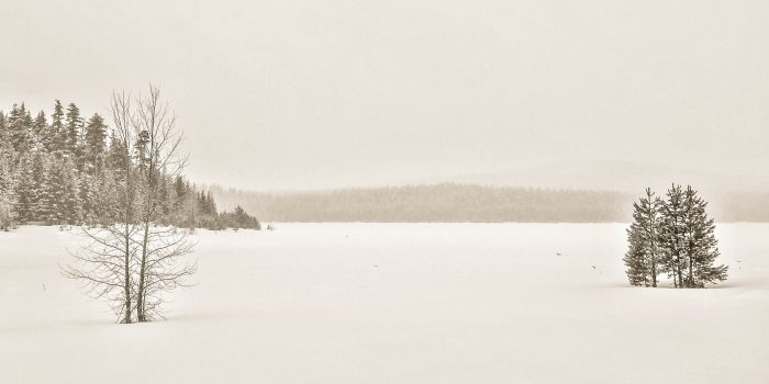 Simply Frozen, Clear Lake in Winter - 20x10 - Photography